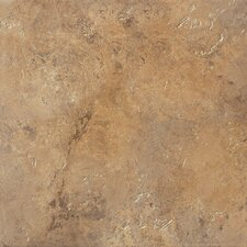 "Aida 18"" x 18"" Porcelain Field Tile in Brown"