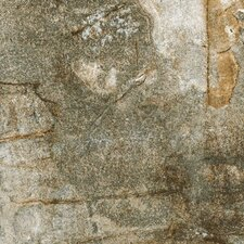 """Vesale Stone 20"""" x 20"""" Porcelain Field Tile in Moss"""