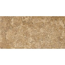 "Artea Stone 6.5"" x 13"" Porcelain Field Tile in Noce"