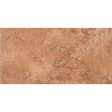 "Tosca 6.5"" x 13"" Porcelain Field Tile in Amber"