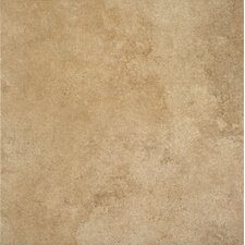 """Stone Age 18"""" x 18"""" Porcelain Field Tile in Mammoth"""