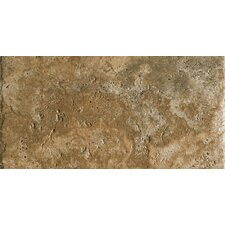 """Archaeology 6.5"""" x 13"""" Porcelain Field Tile in Chaco Canyon"""
