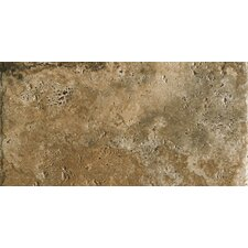 """Archaeology 12"""" x 24"""" Porcelain Field Tile in Chaco Canyon"""