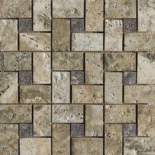 Archaeology Random Sized Porcelain Mosaic Tile in Crystal River