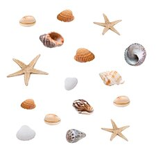 Fensterbilder Seashells