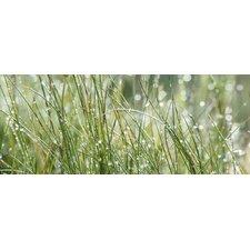 Glasbild Sparkling Field Fotodruck