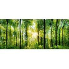 Schild Green Sunshine, Fotodruck