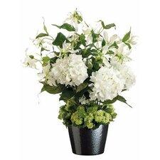 Hydrangea / Gloriosa in Ceramic Pot