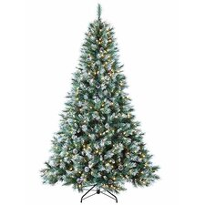 7' Frosted Mountain Pine Artificial Christmas Tree with Clear Lights