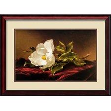 'Magnolia Grandiflora' by Martin Johnson Heade Framed Painting Print