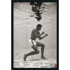 Ali Underwater Framed Photographic Print