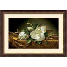 'Magnolias on Gold Velvet Cloth' by Martin Johnson Heade Framed Graphic Art