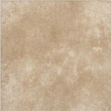 Treymont 18'' x 18'' Porcelain Field Tile in Willow