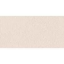 """Direction 12"""" x 24"""" Porcelain Field Tile in Coordinate"""