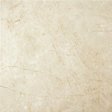 """24"""" x 24"""" Marble Field Tile in Crema Marfil"""