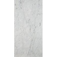 "12"" x 24"" Marble Field Tile in Bianco Gioia"