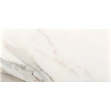 "12"" x 24"" Marble Field Tile in Calacata Oro"