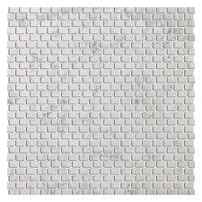 "Bianco Gioia 12"" x 12"" Marble Tile in Bianco Gioia"
