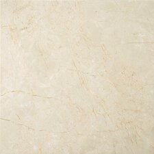 "Crema Marfil 12"" x 12"" Marble Field Tile in Ivory"