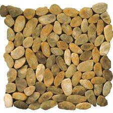 Natural Stone Random Sized Pebble Tile in Gold