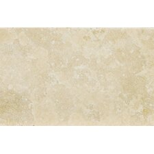 "Natural Stone 8"" x 12"" Travertine Field Tile in Ancient Beige"