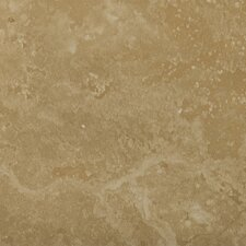 "Madrid 20"" x 20"" Porcelain Field Tile in Brava"