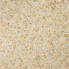 "Natural Stone 12"" x 12"" Granite Field Tile in Empress Gold"