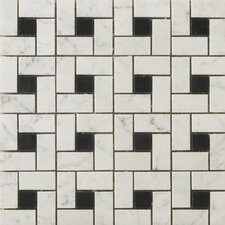 Natural Stone Random Sized Marble Mosaic Tile in Bianco Gioia and Black