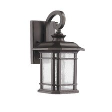 Transitional 1 Light Outdoor Wall Lantern