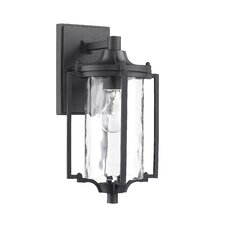 Transitional 1 Light Outdoor Sconce
