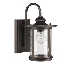 Cole 1 Light Outdoor Wall Lantern