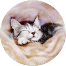 """19cm Teller """"Schlafendes Kätzchen"""" aus Bone China"""