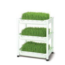 Small Deluxe Soil-Free Wheatgrass Grower