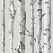 "Birch Tree Peel and Stick 18' x 20.5"" Scenic Roll Wallpaper"