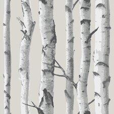 Birch Tree Peel And Stick Wallpaper