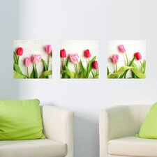 Tulip 3 Piece Panoramic Wall Decal Set