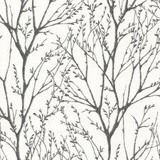 "Bath Bath Bath Volume IV 33' x 20.5"" Delamere Tree Branches 3D Embossed Wallpaper"