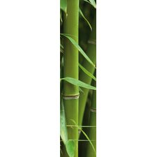 Euro Stripe Bamboo Wall Decal