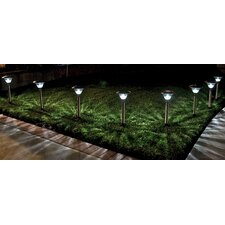 Solar LED Pathway Lighting (Set of 8)