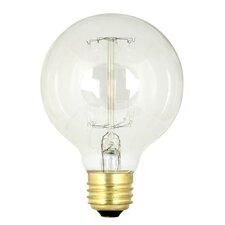 60W 120-Volt Incandescent Light Bulb