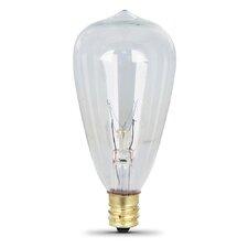 7W 120-Volt Incandescent Light Bulb (Set of 2)