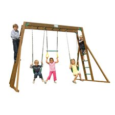 Classic Top Ladder Swing Set