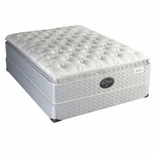 Back Supporter Four Seasons Enticement Euro Top Mattress