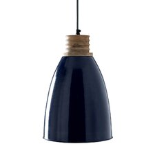 Wilcox 1 Light Outdoor Hanging Lantern/Pendant