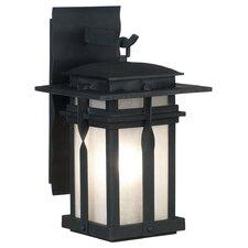 Alicia 1 Light Outdoor Wall Lantern