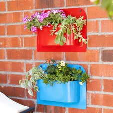 Novelty Wall Planter (Set of 2)