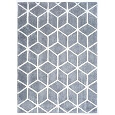 Dada Gray & Ivory Tufted Area Rug