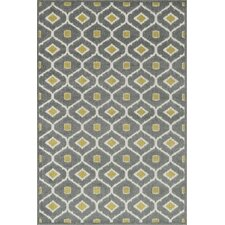 Clarabella Grey/Citron Outdoor Area Rug