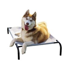 Elevated Indoor/Outdoor Pet Cot