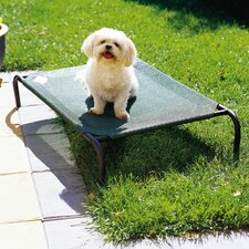 Elevated Indoor/Outdoor Pet Cot for Small Breeds